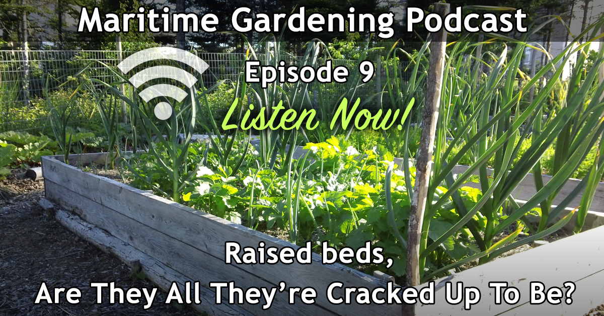 Episode 009 - Raised beds: Are They All They're Cracked Up To be?