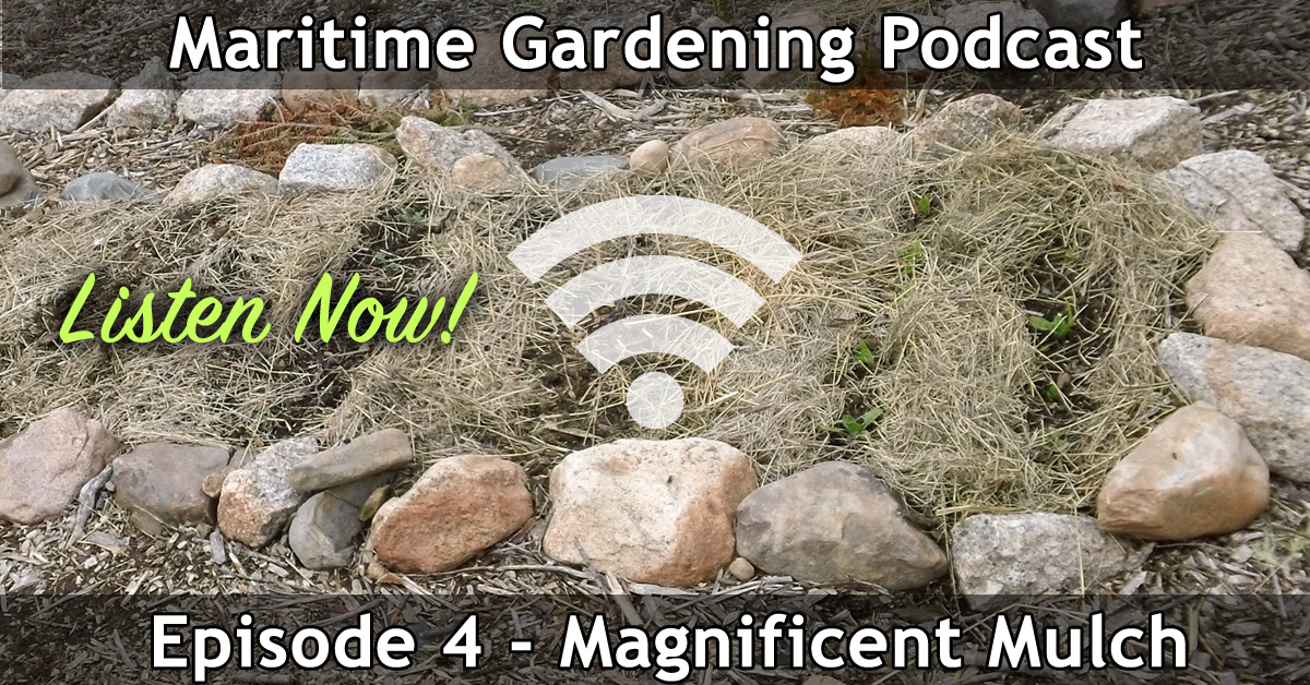 Maritime Gardening Podcast Episode 4