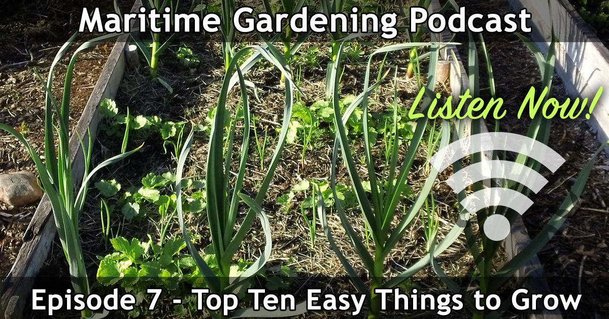 Top Ten Easy Things to Grow - Episode 7