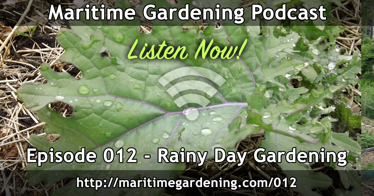 Rainy Day Gardening - Episode 012