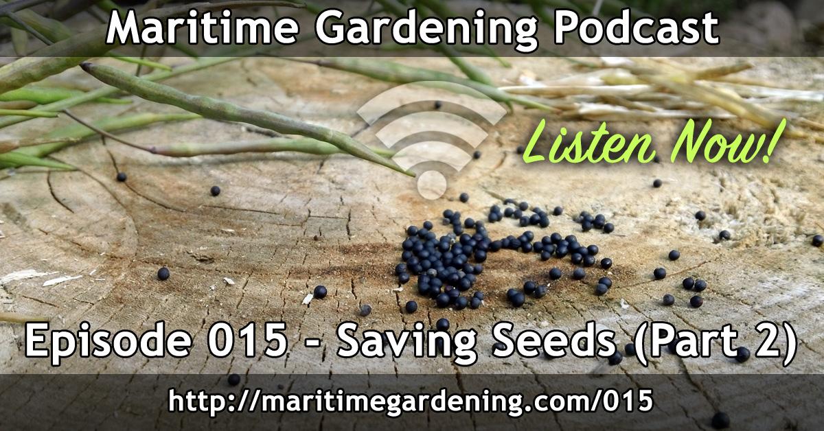Episode 15 - Saving Seeds - Maritime Gardening Podcast