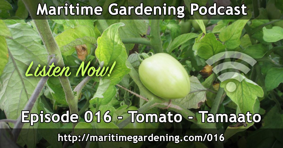 Tomato - Tamaato - Podcast Episode 016 Maritime Gardening