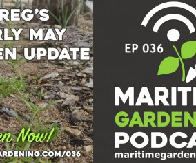Episode 36 - Greg's Early May Garden Update