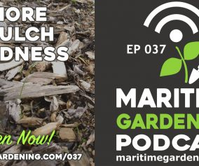 Episode 37 - More Mulch Madness