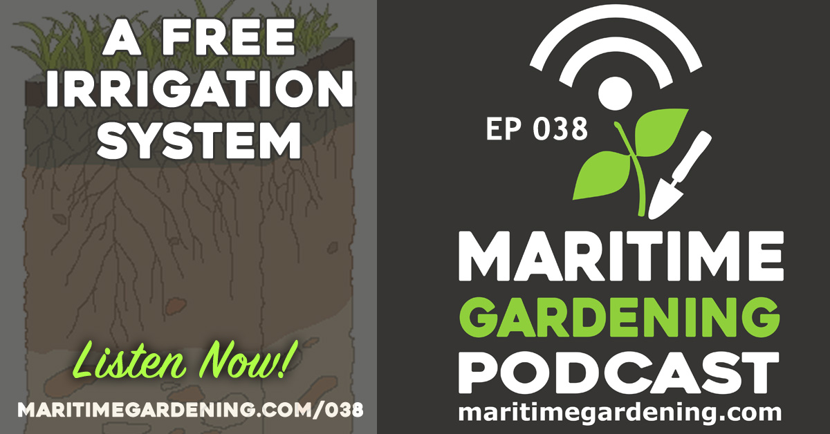 Episode 38 Maritime Gardening Podcast