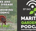 Ticks and Lyme Disease - The Growing Epidemic