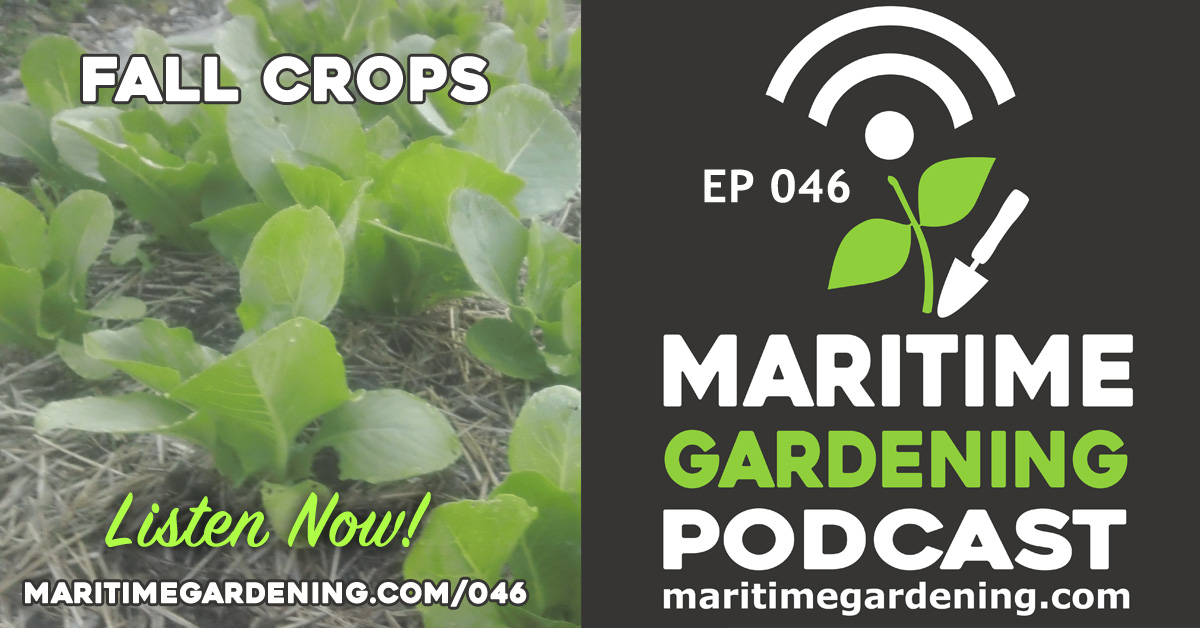 Podcast Episode 46 - Fall Crops