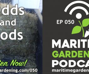 Episode 50 - Odds & Sods - Maritime Gardening Podcast