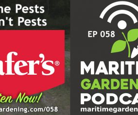 Episode 58 - Some Pests Aren't Pests