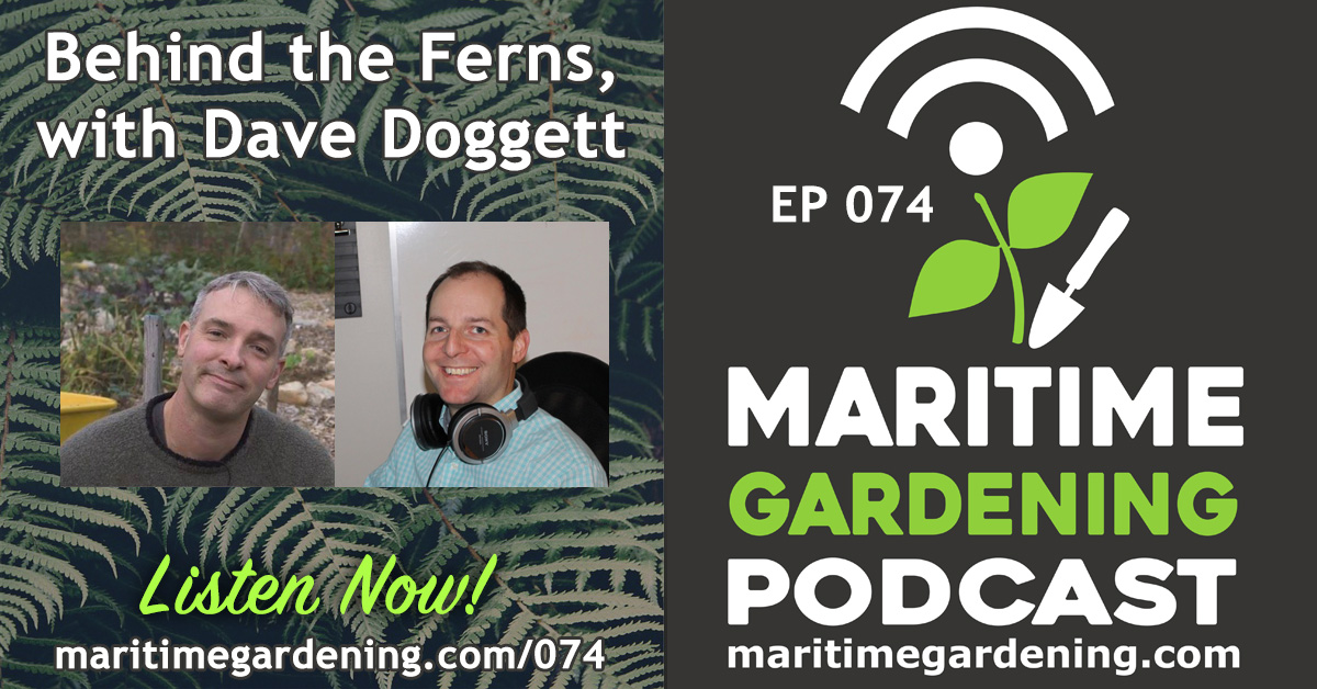 MG74 Podcast - Behind the Ferns, with Dave Doggett