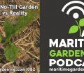 Episode 82 - Pests in a No-Till Garden - Myth vs Reality