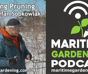 Episode 96 of Maritime Gardening Podcast