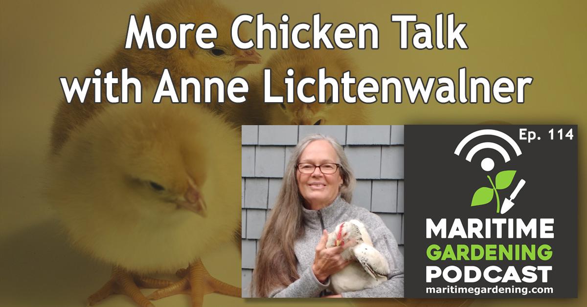 More Chicken Talk with Anne